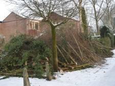 Kaalslag Bilthovense Iepenlaan schokt buurt