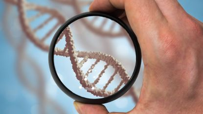Vlaamse regering keurt oprichting afstammingscentrum en DNA-databank definitief goed