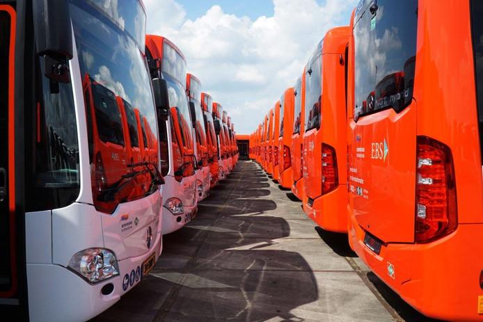 De bussen van de nieuwe streekvervoerder EBSstaan klaar om vanaf volgende week door de regio te gaan rijden.