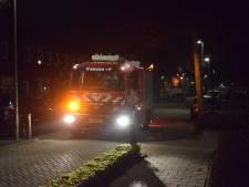 Brandweer rukt uit voor onschuldige vuurkorf in Vianen