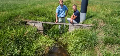 De droge Landgoederen Oldenzaal worden gered: 'Op agrarische percelen groeit straks bos of kruidenrijk gras'