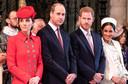 Vlak nadat Meghan Harry vergezelde op een reis naar Botswana, zou Kate Middleton prins Harry hebben gewaarschuwd om het rustiger aan te doen.