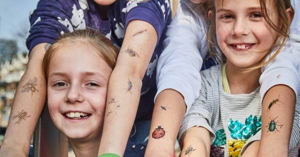 Insectentattoos Albert Heijn Grote Hit Volgeplakte Kinderen