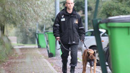 Jaar langer privébewaking met honden op snelwegparkings: kostprijs 2 miljoen euro