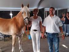 Rekkense W Boss is officieel
