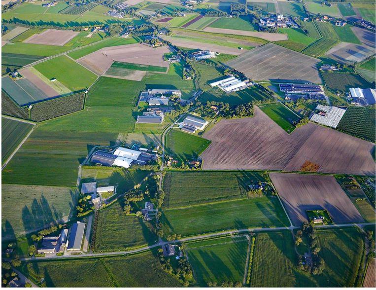 Een van de agrarische gebieden van Venray Beeld  Johan Roerink / Aeropicture