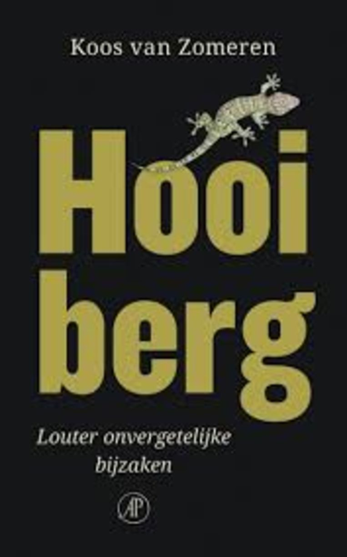 Koos van Zomeren, Hooiberg. Beeld rv