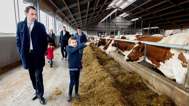 Staatssecretaris Martijn van Dam (Economische Zaken) krijgt een rondleiding op een melkveebedrijf Beeld null