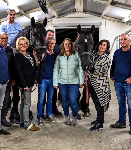 Trekpaardenwedstrijd in Roosendaal is een 'gezellig Brabants evenement'
