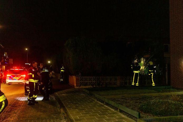 Een buurtbewoner kon de coniferen redden