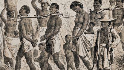 500 jaar geleden begon de slavenhandel tussen Afrika en Amerika die miljoenen levens verwoestte. Een Vlaming speelde de hoofdrol
