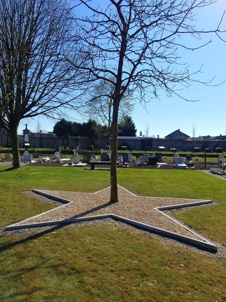 De blikvanger van de sterrenweide voor levenloos geboren kinderen op de begraafplaats van Ninove.
