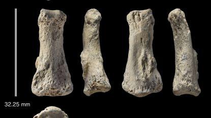 Zet de vondst van één klein vingerkootje de theorie over de moderne mens op zijn kop?