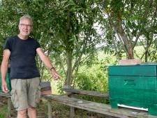 Bijendiefstal nieuw fenomeen in Nederland