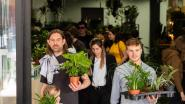 Plezante en Uitzonderlijke Planten strijkt neer in Villa 99: planten, art deco en kunstwerken in één pop-up winkel