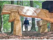 Nieuwe kunstroute benadrukt de schoonheid van  Lonneker: 'Willen toeristen langer in Twente houden'