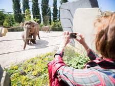 Goedkope Nederlandse pretparken in trek bij buitenlandse toeristen