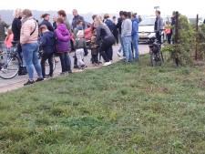Duizenden wachten tevergeefs: landing para's in Groesbeek afgelast