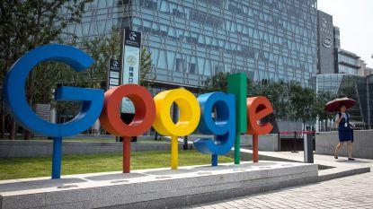 Weet jij hoe Google in het begin heette? Internetgigant wordt 20 jaar en dat vieren we met leuke weetjes