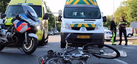 Fietser gewond na aanrijding met dierenambulance in Almelo