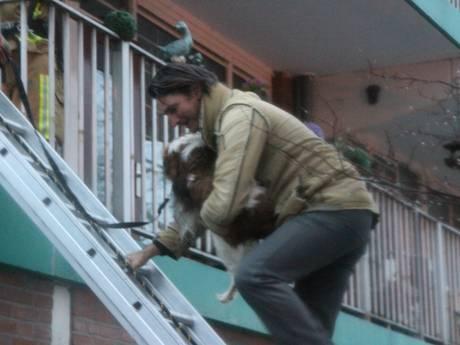 Bewoners en hun huisdieren uit woningen gered bij brand