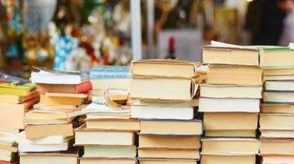 """Maandelijkse boekenmarkt gaat verhuizen: """"Boeken en paraplu's belanden te vaak in de Demer!"""""""