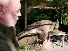 Han uit Beerzerhaar ringt op zijn 82ste voor het eerst oehoes en rode wouwen