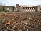 De 'uitbundige nieuwe natuur' bij ruïne Rhederhof is gesloopt