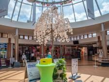 Protest maakt winkelier Malden nijdig: 'De pietjes gaan niet weg'