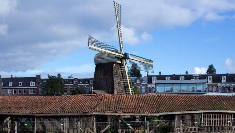 Zowel de molen zelf als de omliggende gebouwen maken een haveloze indruk Beeld Hollandse Hoogte
