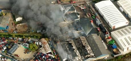 Gemeente voert dioxine-weidegras af in Weurt
