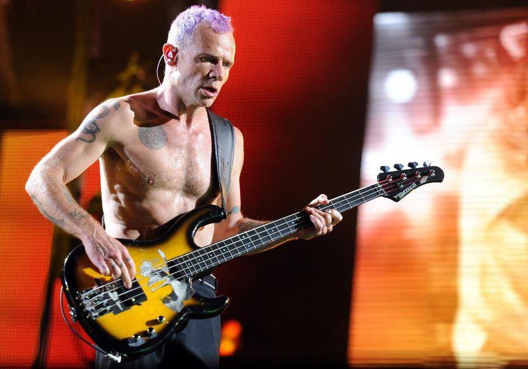 Flea van The Red Hot Chili Peppers. Beeld epa