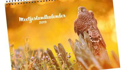 Meetjeslandse roofvogels op kalender 2019