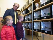444 kwetterende vogels zorgen voor leven in dorpshuis Aardenburg