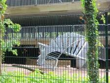 Dode bij ongeval op bouwplaats parkeergarage DierenPark Amersfoort