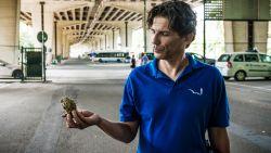 """Onrust onder viaduct Gentbrugge: """"Je zal zo'n stuk beton maar op je hoofd krijgen"""""""