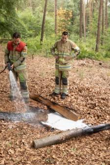 Fransen stoken kampvuur in bos bij Lage Vuursche, ondanks code oranje