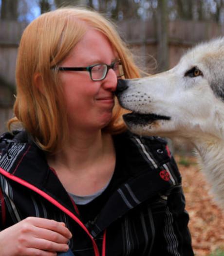 Michelle uit Boekel onderzoekt: wolven zijn slimmer dan honden