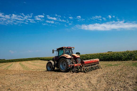 De droogte speelt de Vlaamse land- en tuinbouwsector parten. Archieffoto.