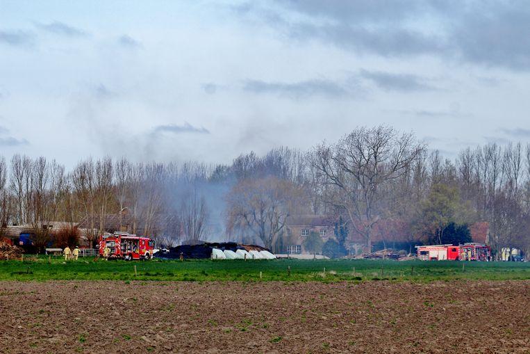 In de Haelinckstraat in Zevekote woedde een zware stalbrand.