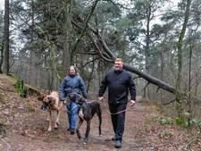Wandelaars en fietsers gaan gewoon het bos in