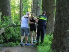 Hardloopster gewond door vallende tak in Park Schothorst