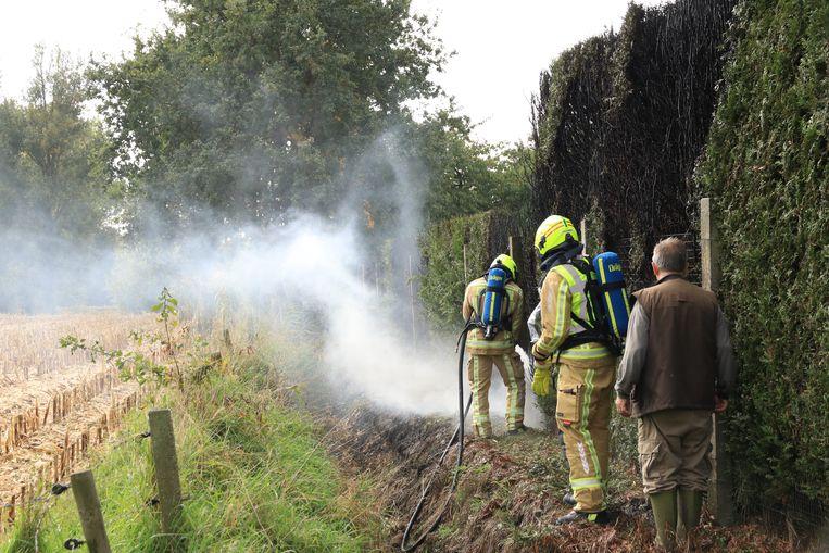 De brandweer slaagde erin het vuur snel onder controle te krijgen