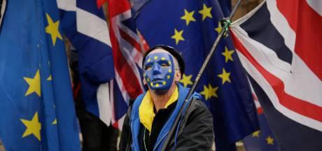 Ierland: 'Het Verenigd Koninkrijk moet alleen met EU onderhandelen over brexit'
