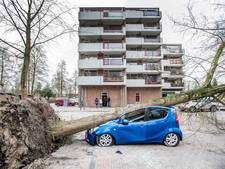 Hulpdiensten in Gelderland rukten het vaakst uit tijdens westerstorm