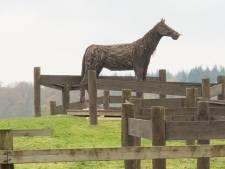 Beekbergen is een enorm ijzeren paard rijker aan de Bruggelerweg