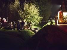 Brandweer redt paard uit sloot Sint-Philipsland