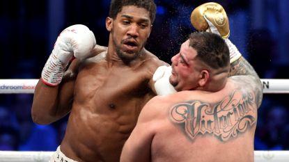 """Zwaargewichtkampioen Wilder bekritiseert Joshua na zege tegen Ruiz: """"Ik heb een andere mentaliteit"""""""