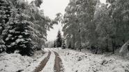 Flink pak sneeuw op komst op Ardennentoppen