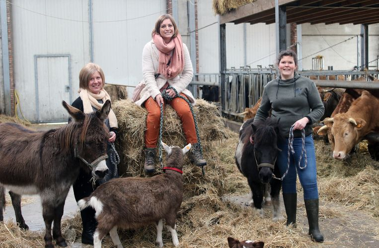 Coaches Hilde Theunis en Annelies Driesens en boerin Stephanie Van Hove van boerderij Trezemieke in Retie.